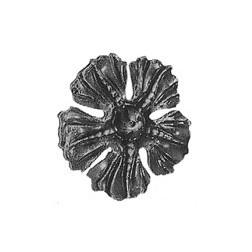 Květ 600/N-437